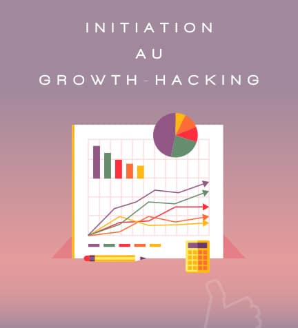 Initiation au Growth Hacking plan de formation